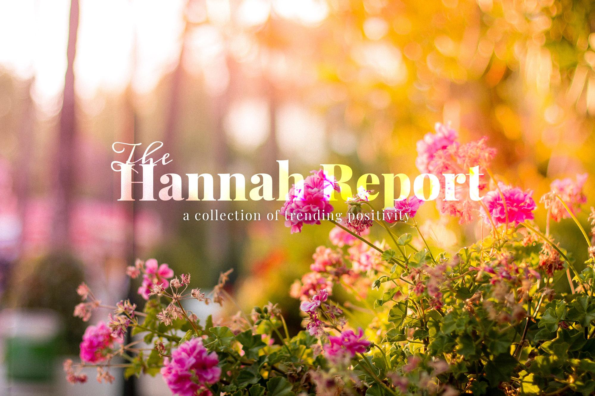 The Hannah Report branding, website development, and digital marketing